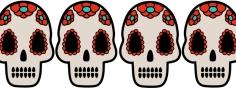 skull_header